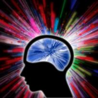 Science Spotlight: Mindfulness and Neuroplasticity