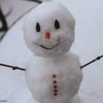 Science Spotlight: Welcome Winter!